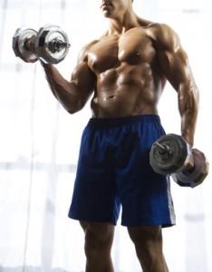 der schnelle Muskelaufbau